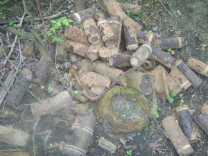 Shells uncovered near the trench network.